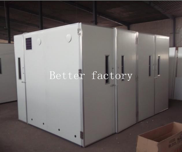 Professional Incubator/chicken layer cage/chicken egg poultry farm equipment