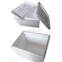 China EPS Foam cooler box for keeping food fresh