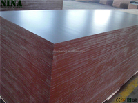 Stable Quality concrete formwork film faced Plywood 18mm / Europe EN standard /NINA Brand
