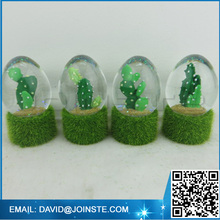 Picture insert snow globe