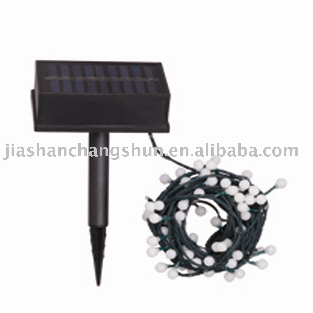 Solar Garden Decorative Light