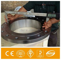 SS316L Marine Flange/ Stainless Steel Shaft/Equipment Flange