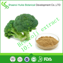 100% natural borneol plant extract broccoli powder broccoli extract