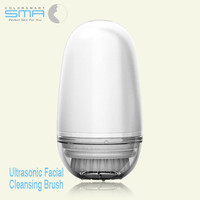 New Adult Cheap Battery Powered Mini Ultra Sonic Rotating Facial Massage Brush With Waterproof For Home And Travel