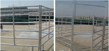 Hot dip galvanized horse stall panels widely used