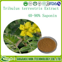Tribulus Terrestris Extract 40-90% Saponin used as a female and male sexual performance enhancer