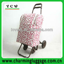 Folding Supermarket Portable Trolley Shopping Bag With Wheels