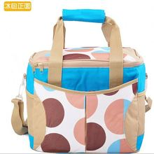 Most popular crazy selling export soft sided cooler bags