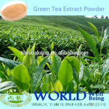 China Supplier High Quality Green Tea Powder Tea Polyphenols/Green Tea Extract Powder/Low Price Green Tea Extract