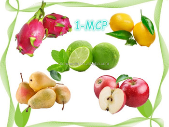1-MCP slow down the ripening speed of fruits