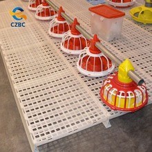 Automatic chicken nipple drinkers poultry farm equipments