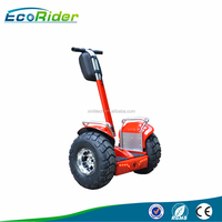 Ecorider high quality China cheap electric scooter, electric chariot E8-2 for sale