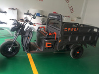 1000w/1200w van cargo electric tricycle
