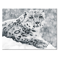 Custom Canvas Art Prints Leopard and Snow Picture Printing for Home Decoration Animal Photo Canvas Painting Room Decor Ready to