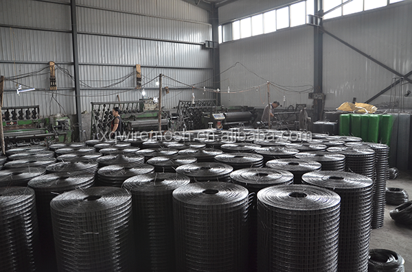 High Quality Good Price Welded Wire Mesh/ PVC Coated Welded Wire Mesh/Galvanized Welded Wire Mesh (Direct Factory)