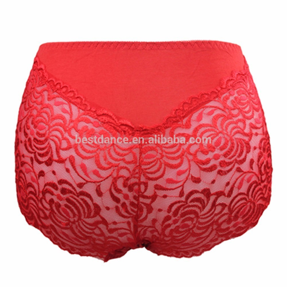 Bestdance OEM Hot Sale Cozy Lace high waist pants lingerie Briefs G-String for women Underpants