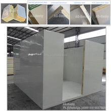Frozen cold storage room for meat with 4 inch PU insulation panels