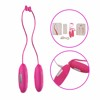 Multispeed Waterproof G-spot Vibrating Adult Sex Toy Twins Love Eggs Vibrator Breast Massager