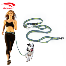 Wholesale Pet Products Outdoor Reflective Elastic Bungee Hands Free Running Dog Leash