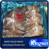 New Coming Frozen Giant Squid Wing