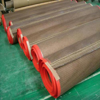 High Temperature 260 C PTFE Teflon Coated Fiberglass Mesh Conveyor Belt for Shrink Tunnel