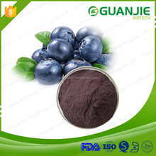 13 years manufactory supply high quality 25% Anthocyanidins bilberry extract