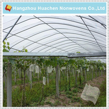 Hotselling SGS Certificated PP Spunbond Nonwoven Fabric Plant Cover/Tent Agriculture