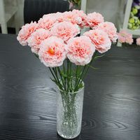 factory direct wholesale carnation cut flower prices