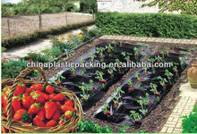 France market Mulching agriculture film black for strawberry