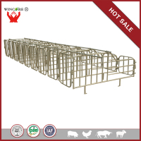 Hot-dip Galvanized Sow Gestation Crate for Pig Farm