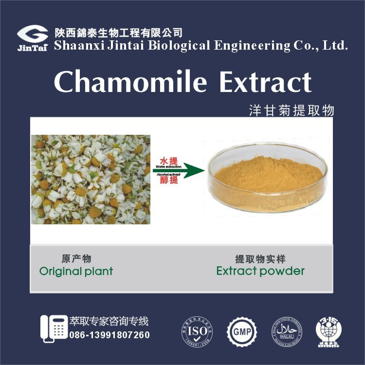 Natural plant extractMatricaria recutita Chamomile extract powder