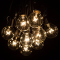 25Ft G40 Globe String Lights with Clear Bulbs, UL listed, Hanging Indoor/Outdoor String Light for Deckyard Backya