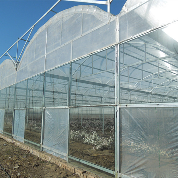 Greenhouse / hobby greenhouse / plastic greenhouse / garden shed pc