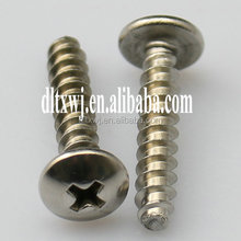 China Price Phillips Truss Head Self Tapping Screw with flat tail