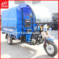 Motor Power Goods Delivery Car/Delivery Tricycle With Waterproof Canvas