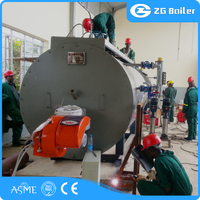2TPH gas fired boiler and Natural Circulation Type exhaust gas economizer boiler