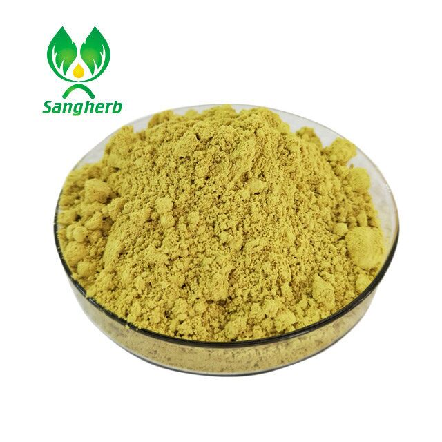 Pure natural herb extract,Ginkgo biloba extract powder/24% flavone Ginkgo biloba leaf extract with competitive price