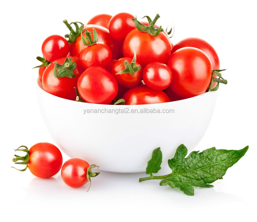 GMP Factory Direct Supply 100% Natural Tomato Extract Lycopene P.E.