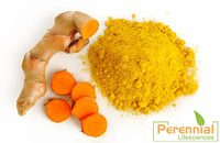 Hot sale Curcumin P.E. good effect on anti cancer with free sample by professional manufacture