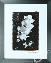 Black frame flower wall decoration picture