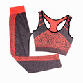 Womens seamless 2 pieces yoga sport clothes set