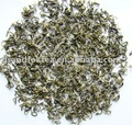 Spring High Mountain XiangCha Green Tea