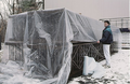 Wind Resistant plastic film for covering wall and greenhouse