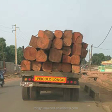 Mussivi/Mussibi squared logs from Angola, 30x30cmMussivi Logs (Guibourtia Coleosperma) Industrial Round Logs Available