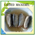 high quality canned fish canned mackerel in oil from China