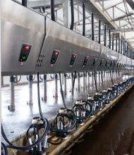 Digital electronic meter Milking Parlor for cows