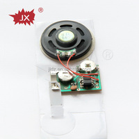 Customized sound recording module for card or promotional gift