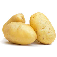 2017 new crop fresh potato from china