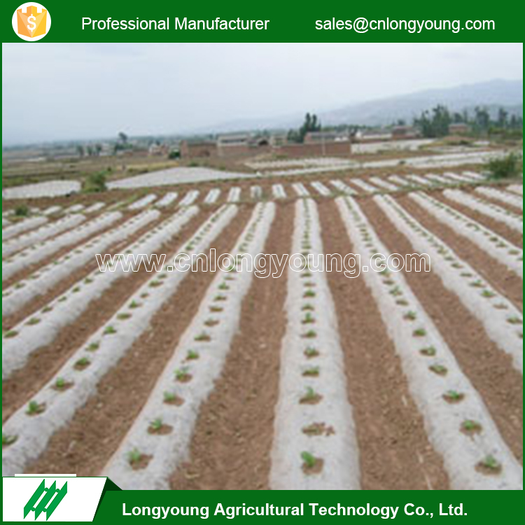 New products anti germs weeds proof outdoor agricultural mulch film