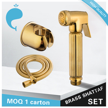 Oro brillante viajes bidet Sprayer kit con manguera flexible y titular